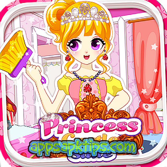 Princess Castle Cleanup