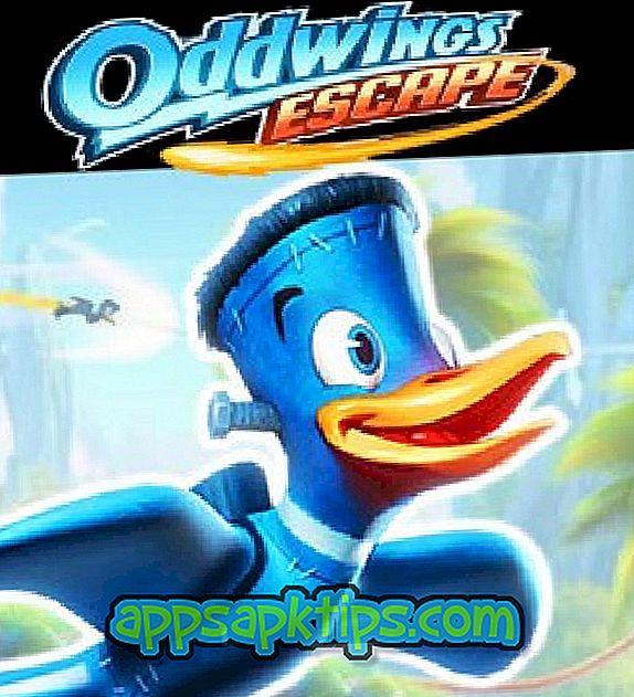 Oddwings Flucht