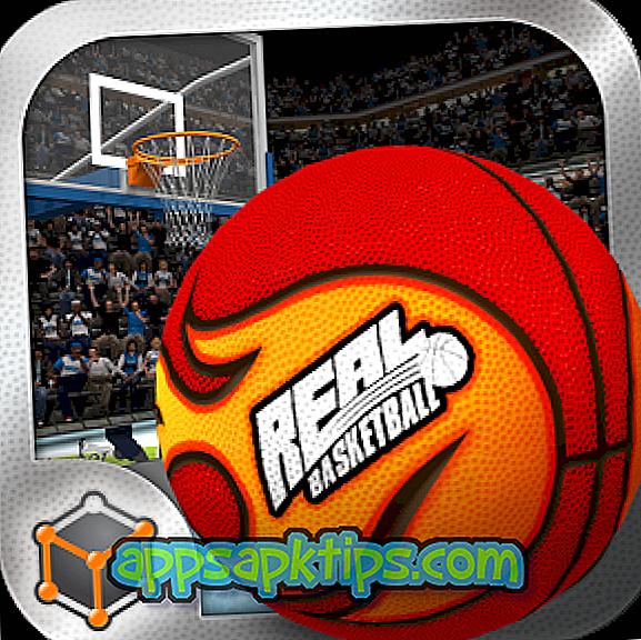 Echter Basketball