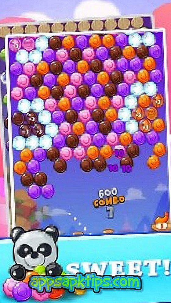 Sweet Panda Bubble