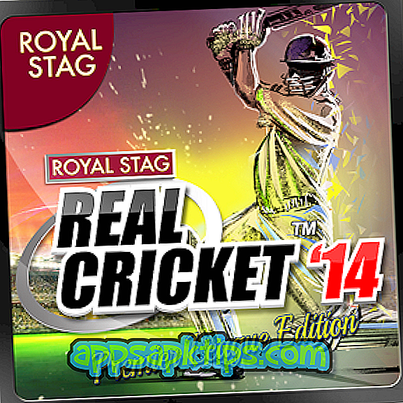 Echtes Cricket '14