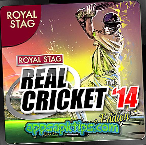 Pravi kriket '14