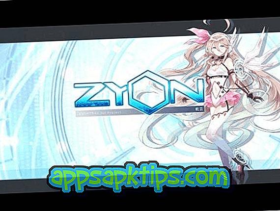 Zyon Rhythm