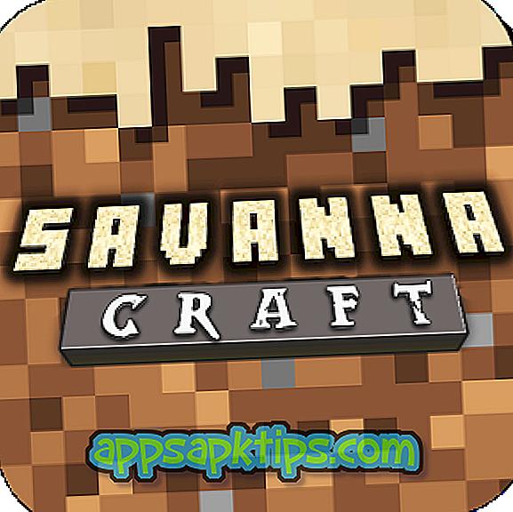 Savanna Craft