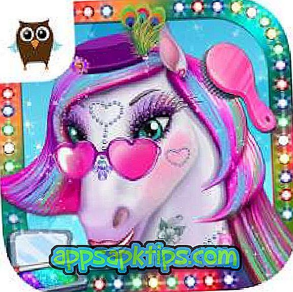 Min dejlige hestpleje