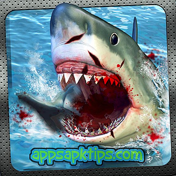 Симулятор акули 2