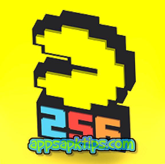 PAC-MAN 256 begalinis labirintas