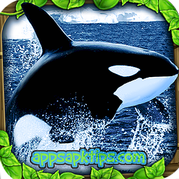 Simulátor Orca