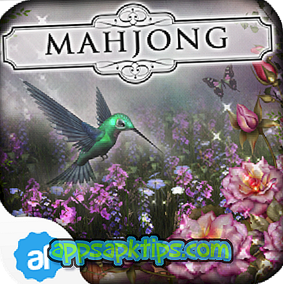 Downloaden Hidden Mahjong Summer Garden Op De Computer