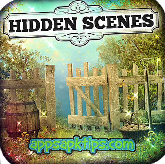 Downloaden Hidden Scenes – Country Corner Op De Computer