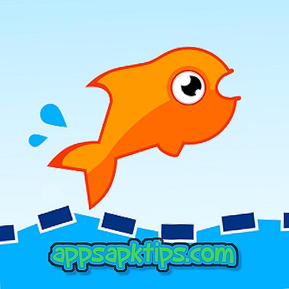 ดาวน์โหลด Jumping Fish บนเครื่องคอมพิวเตอร์
