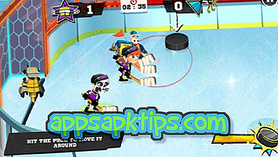 Downloaden Hockey Stars Op De Computer