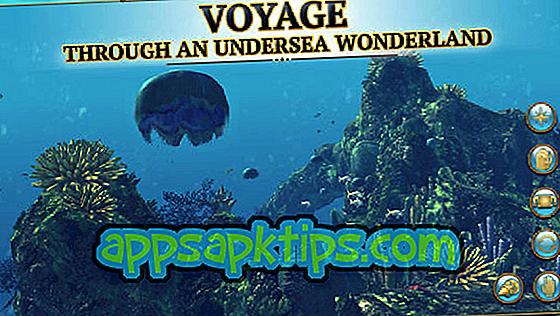 Scuba Diver Adventures Jenseits der Tiefen