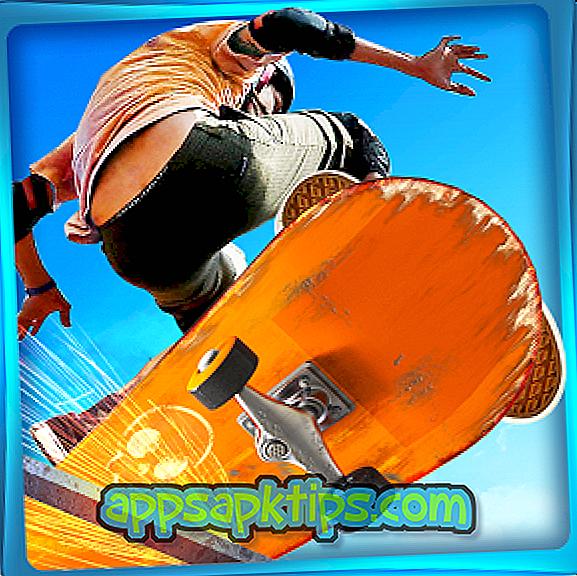 """""""Real Skate 3D"""""""