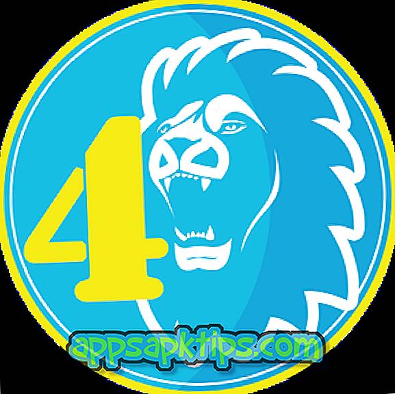 4ème lion