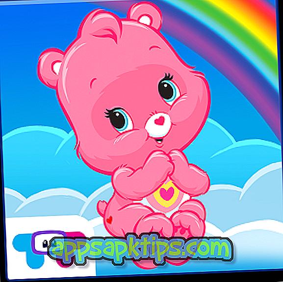 Njega medvjeda Rainbow
