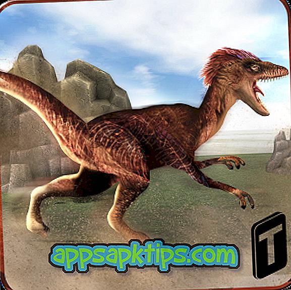 Pobieranie Dinosaur Race 3D Na Komputerze