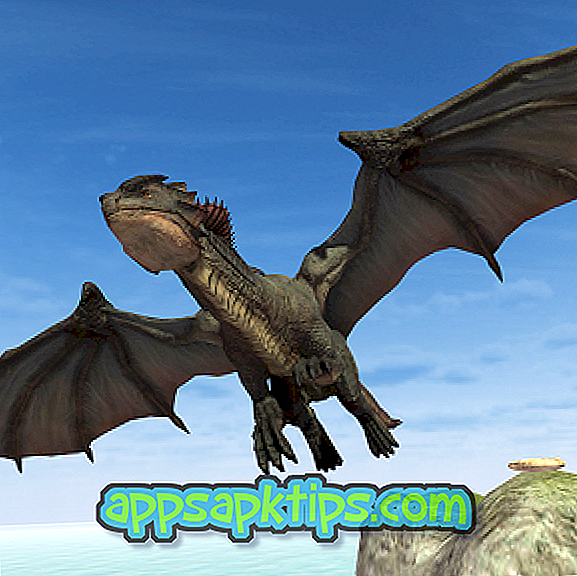 Скачать Flying Fury Dragon Simulator на компьютер