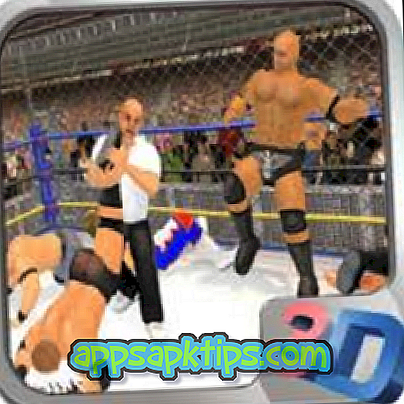 Download King of Wrestlers 3D Di Komputer