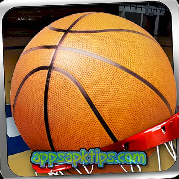 Basketball-Manie