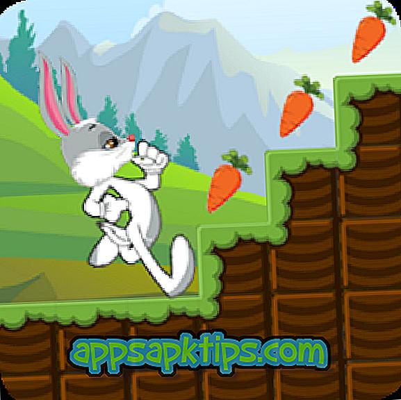 Bunny Run Peter Legend
