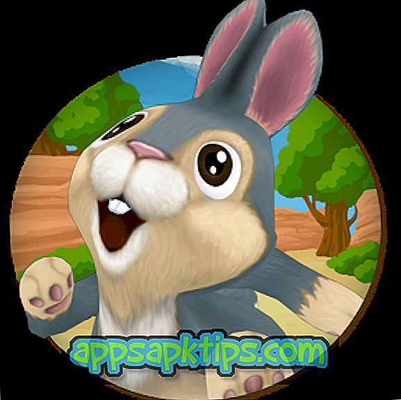 กระต่ายวิ่ง