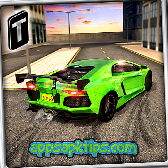 Automobilių vairuotojas 3D
