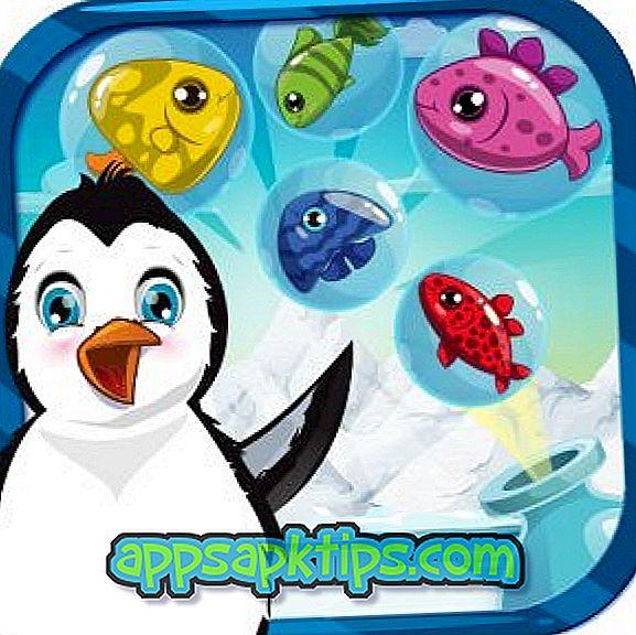 Pingüino antártico congelado